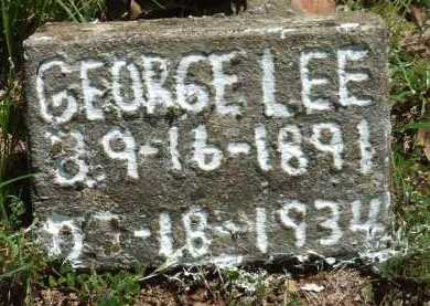 LEE, GEORGE - Baxter County, Arkansas | GEORGE LEE - Arkansas Gravestone Photos