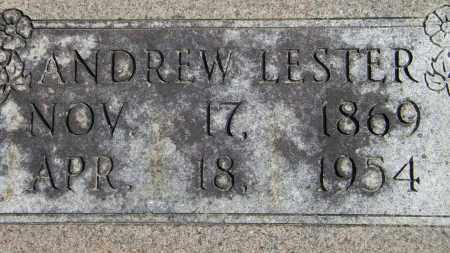 LESTER, ANDREW - Baxter County, Arkansas | ANDREW LESTER - Arkansas Gravestone Photos