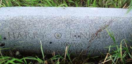 LINDERMAN (VETERAN), HARRY O - Baxter County, Arkansas | HARRY O LINDERMAN (VETERAN) - Arkansas Gravestone Photos