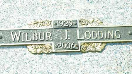 LODDING, WILBUR J. - Baxter County, Arkansas | WILBUR J. LODDING - Arkansas Gravestone Photos