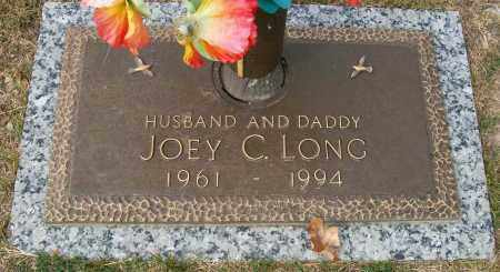 LONG, JOEY C - Baxter County, Arkansas | JOEY C LONG - Arkansas Gravestone Photos