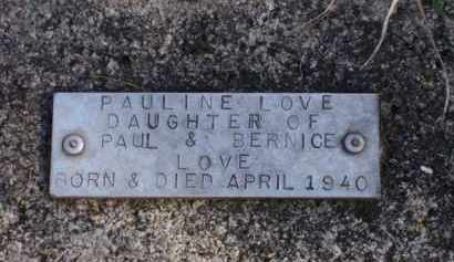 LOVE, PAULINE - Baxter County, Arkansas | PAULINE LOVE - Arkansas Gravestone Photos