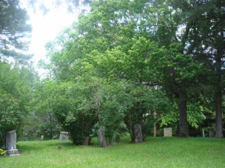 *, MARTIN CEMETERY VIEW - Baxter County, Arkansas | MARTIN CEMETERY VIEW * - Arkansas Gravestone Photos