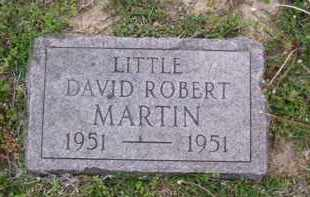MARTIN, DAVID ROBERT - Baxter County, Arkansas | DAVID ROBERT MARTIN - Arkansas Gravestone Photos