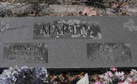 MARTIN, FANNY - Baxter County, Arkansas   FANNY MARTIN - Arkansas Gravestone Photos