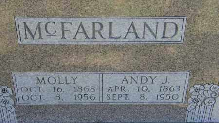 MCFARLAND, MOLLY - Baxter County, Arkansas | MOLLY MCFARLAND - Arkansas Gravestone Photos