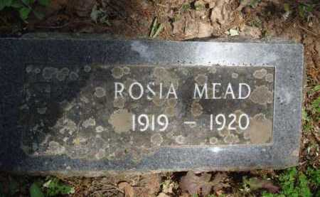 MEAD, ROSIA - Baxter County, Arkansas   ROSIA MEAD - Arkansas Gravestone Photos