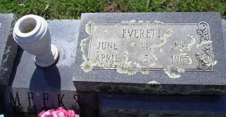 MEEKS, EVERETT - Baxter County, Arkansas | EVERETT MEEKS - Arkansas Gravestone Photos