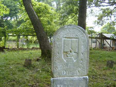 MILLER, FANNIE - Baxter County, Arkansas | FANNIE MILLER - Arkansas Gravestone Photos