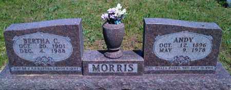 MORRIS, BERTHA C - Baxter County, Arkansas | BERTHA C MORRIS - Arkansas Gravestone Photos