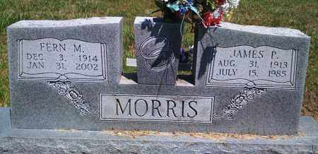 MORRIS, JAMES P - Baxter County, Arkansas | JAMES P MORRIS - Arkansas Gravestone Photos