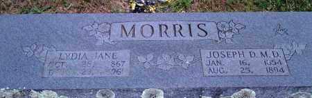 MORRIS, LYDIA JANE - Baxter County, Arkansas   LYDIA JANE MORRIS - Arkansas Gravestone Photos
