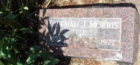 "MORRIS, THURMAN J ""T J"" - Baxter County, Arkansas | THURMAN J ""T J"" MORRIS - Arkansas Gravestone Photos"