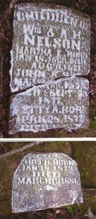 NELSON, BETTY A. - Baxter County, Arkansas   BETTY A. NELSON - Arkansas Gravestone Photos