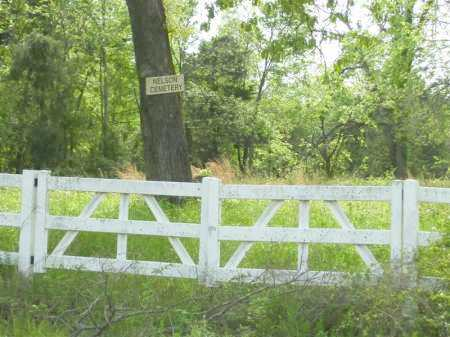 *, NELSON CEMETERY VIEW - Baxter County, Arkansas | NELSON CEMETERY VIEW * - Arkansas Gravestone Photos