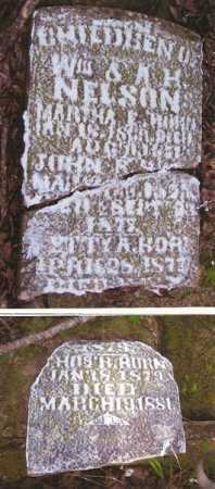 NELSON, MARTHA E. - Baxter County, Arkansas | MARTHA E. NELSON - Arkansas Gravestone Photos