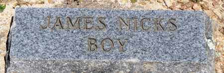 NICKS, BOY - Baxter County, Arkansas | BOY NICKS - Arkansas Gravestone Photos