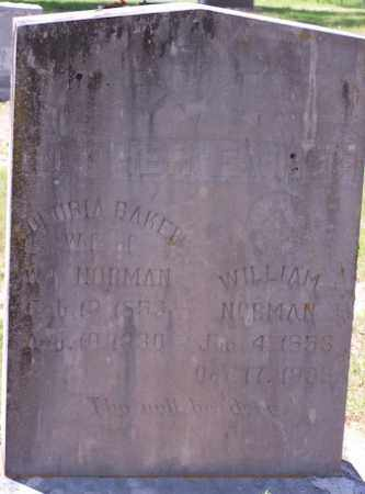 NORMAN, WILLIAM - Baxter County, Arkansas | WILLIAM NORMAN - Arkansas Gravestone Photos