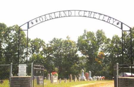 *, OAKLAND CEMETERY ENTRANCE - Baxter County, Arkansas | OAKLAND CEMETERY ENTRANCE * - Arkansas Gravestone Photos