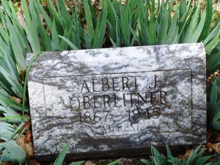 OBERLITNER, ALBERT J - Baxter County, Arkansas   ALBERT J OBERLITNER - Arkansas Gravestone Photos
