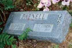 PARNELL, ELIZABETH - Baxter County, Arkansas   ELIZABETH PARNELL - Arkansas Gravestone Photos