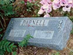 PARNELL, SOLOMON - Baxter County, Arkansas | SOLOMON PARNELL - Arkansas Gravestone Photos