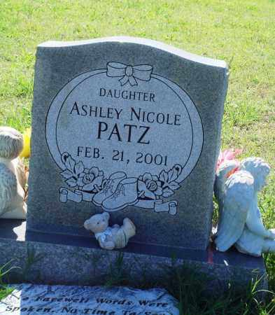PATZ, ASHLEY NICOLE - Baxter County, Arkansas | ASHLEY NICOLE PATZ - Arkansas Gravestone Photos