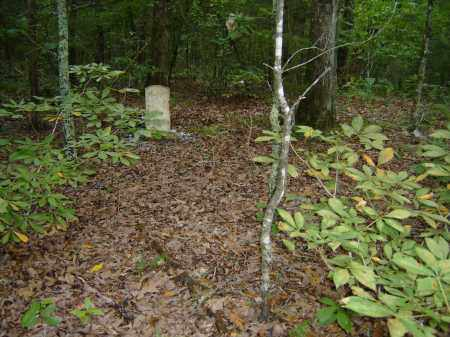 *PAYNE CAMPBELL,  - Baxter County, Arkansas    *PAYNE CAMPBELL - Arkansas Gravestone Photos