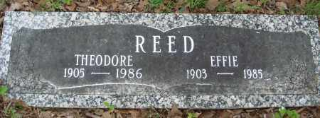 REED, THEODORE - Baxter County, Arkansas | THEODORE REED - Arkansas Gravestone Photos