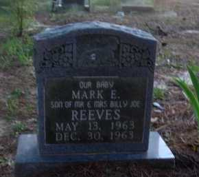 REEVES, MARK E. - Baxter County, Arkansas | MARK E. REEVES - Arkansas Gravestone Photos