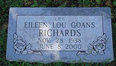 RICHARDS, EILEEN LOU - Baxter County, Arkansas | EILEEN LOU RICHARDS - Arkansas Gravestone Photos