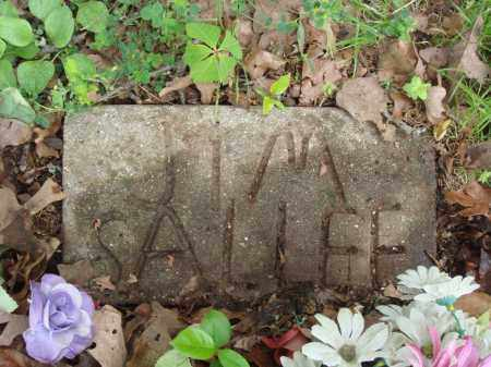 SALLEE, JIM - Baxter County, Arkansas | JIM SALLEE - Arkansas Gravestone Photos