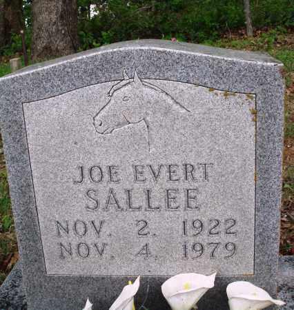 SALLEE, JOE EVERT - Baxter County, Arkansas   JOE EVERT SALLEE - Arkansas Gravestone Photos