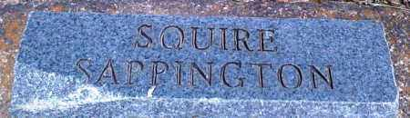 SAPPINGTON, SQUIRE - Baxter County, Arkansas   SQUIRE SAPPINGTON - Arkansas Gravestone Photos