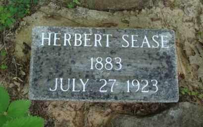SEASE (VETERAN WWI), HERBERT CRANTON - Baxter County, Arkansas   HERBERT CRANTON SEASE (VETERAN WWI) - Arkansas Gravestone Photos