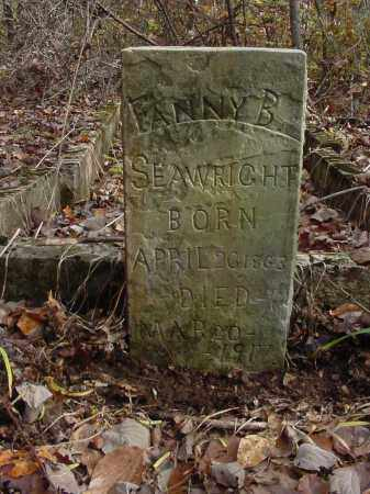 SEAWRIGHT, FANNY - Baxter County, Arkansas | FANNY SEAWRIGHT - Arkansas Gravestone Photos