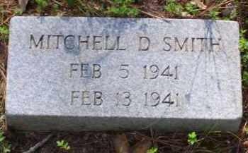 SMITH, MITCHELL DUANE - Baxter County, Arkansas | MITCHELL DUANE SMITH - Arkansas Gravestone Photos