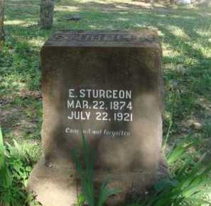 STURGEON, ESQUIRE - Baxter County, Arkansas | ESQUIRE STURGEON - Arkansas Gravestone Photos