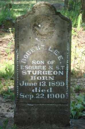 STURGEON, ROBERT LEE - Baxter County, Arkansas   ROBERT LEE STURGEON - Arkansas Gravestone Photos