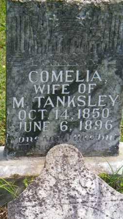 TANKSLEY, COMELIA - Baxter County, Arkansas | COMELIA TANKSLEY - Arkansas Gravestone Photos