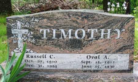 TIMOTHY, RUSSELL C - Baxter County, Arkansas | RUSSELL C TIMOTHY - Arkansas Gravestone Photos