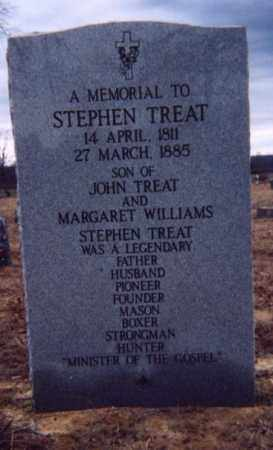 TREAT, STEVEN - Baxter County, Arkansas | STEVEN TREAT - Arkansas Gravestone Photos