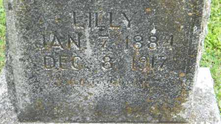 UNKNOWN, LILLY - Baxter County, Arkansas | LILLY UNKNOWN - Arkansas Gravestone Photos