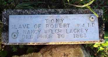 UNKNOWN, TONY - Baxter County, Arkansas | TONY UNKNOWN - Arkansas Gravestone Photos
