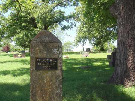 *, WALNUT HILL CEMETERY VIEW - Baxter County, Arkansas | WALNUT HILL CEMETERY VIEW * - Arkansas Gravestone Photos