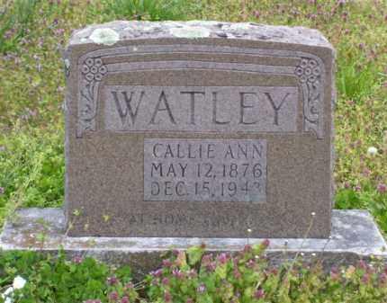 CHASTAIN WATLEY, CALLIE ANN - Baxter County, Arkansas   CALLIE ANN CHASTAIN WATLEY - Arkansas Gravestone Photos