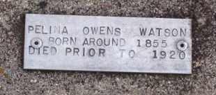 OWENS WATSON, PELINA - Baxter County, Arkansas   PELINA OWENS WATSON - Arkansas Gravestone Photos