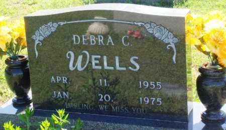 WELLS, DEBRA C - Baxter County, Arkansas | DEBRA C WELLS - Arkansas Gravestone Photos