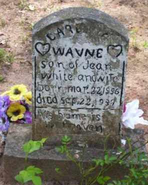 WHITE, WAYNE - Baxter County, Arkansas   WAYNE WHITE - Arkansas Gravestone Photos