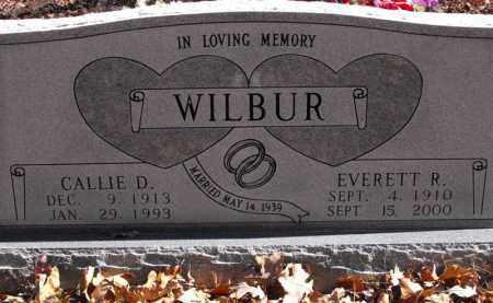 BENCH WILBUR, CALLIE D. - Baxter County, Arkansas | CALLIE D. BENCH WILBUR - Arkansas Gravestone Photos